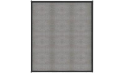 HECHT Insektenschutz - Fenster »FAST«, anthrazit/anthrazit, BxH: 120x140 cm kaufen