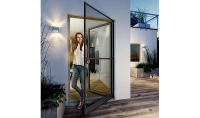 Windhager Insektenschutz-Tür »EXPERT Rahmen Drehtür«, BxH: 120x240 cm kaufen