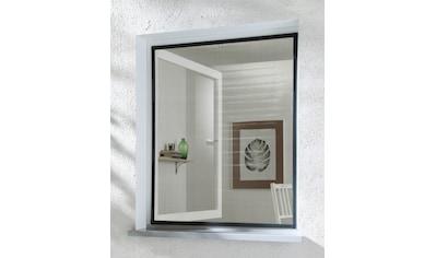 hecht international Insektenschutz-Fenster »BASIC«, anthrazit/anthrazit, BxH: 130x150 cm kaufen