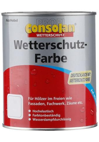 Consolan Wetterschutzfarbe »Profi Holzschutz«, 0,75 Liter, weiß kaufen