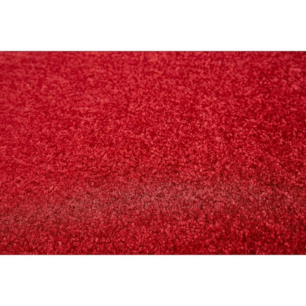 Andiamo Fußmatte »Super Wash & Clean«, rechteckig, 7 mm Höhe, Fussabstreifer, Fussabtreter, Schmutzfangläufer, Schmutzfangmatte, Schmutzfangteppich, Schmutzmatte, Türmatte, Türvorleger, In- und Outdoor geeignet, waschbar