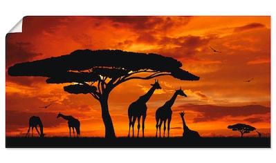 Artland Wandbild »Herde von Giraffen im Sonnenuntergang«, Wildtiere, (1 St.), in... kaufen