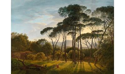 Art for the home Leinwandbild »Italienische Landschaft mit Pinien« kaufen