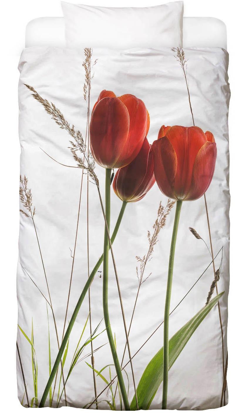 Bettwäsche Flora - Tulpe Juniqe