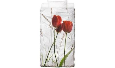 Bettwäsche »Flora  -  Tulpe«, Juniqe kaufen