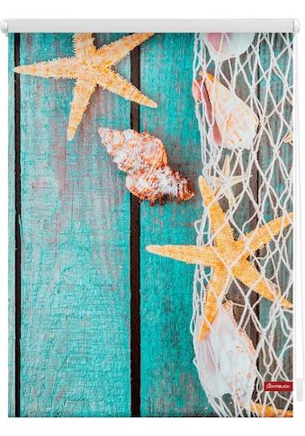 LICHTBLICK ORIGINAL Seitenzugrollo »Klemmfix Motiv Bretter Beach«, Lichtschutz, ohne... kaufen
