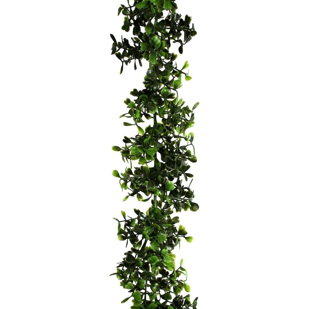 Creativ green Kunstgirlande »Buchsbaum-Girlande«