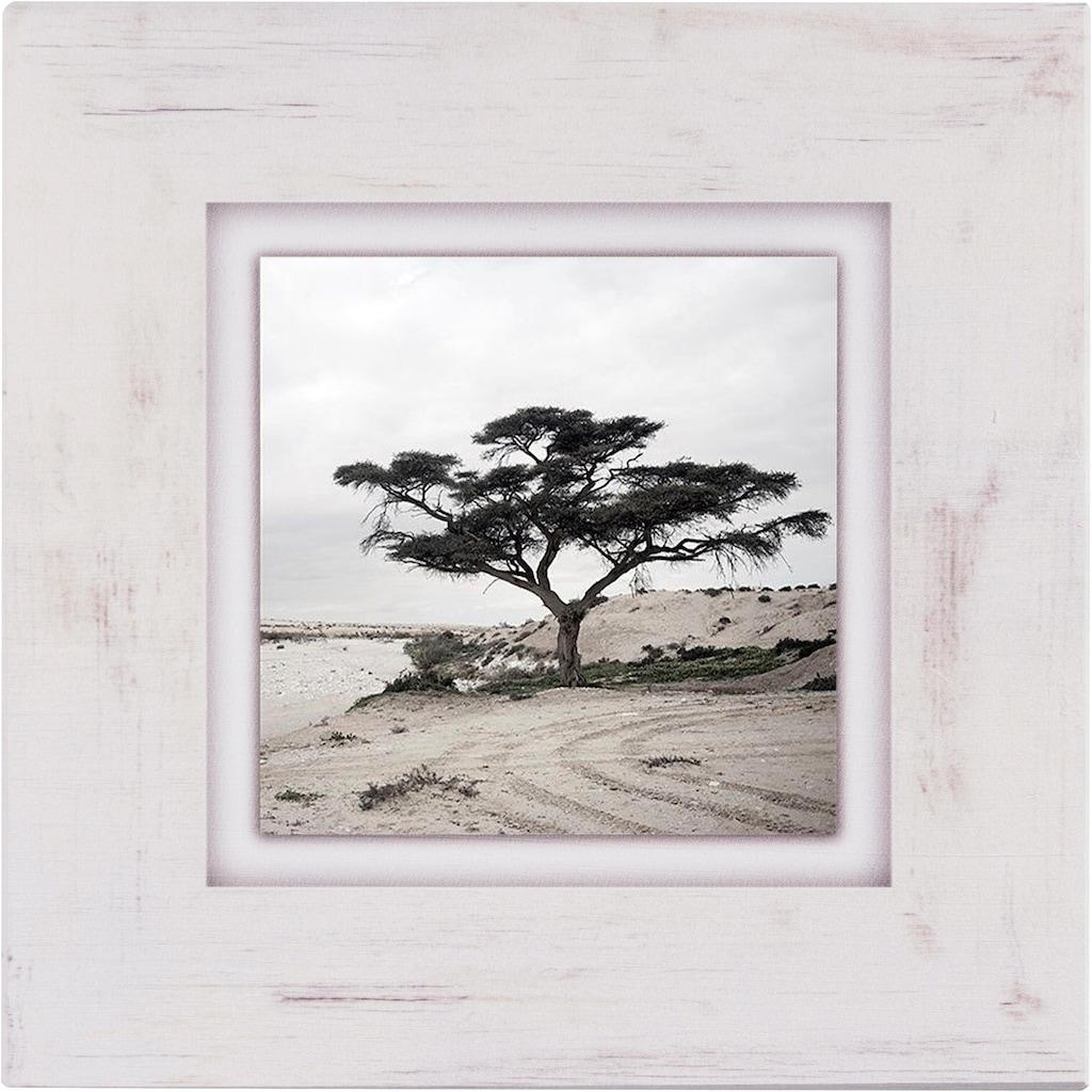 Home affaire Holzbild »Baum«, 40/40 cm