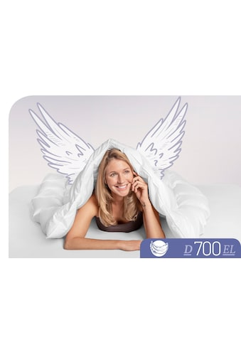 Schlafstil Gänsedaunenbettdecke »D700«, extraleicht, Füllung 100% Gänsedaunen, Bezug 100% Baumwolle, (1 St.), hergestellt in Deutschland, allergikerfreundlich kaufen