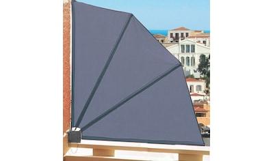 QUICK STAR Sichtschutzfächer BxH: 140x140 cm kaufen