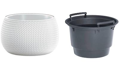 Prosperplast Pflanzkübel »Splofy Bowl«, ØxH: 47,8x30 cm kaufen