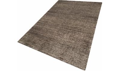 Festival Hochflor-Teppich »Delgardo K11496«, rechteckig, 30 mm Höhe, Besonders weich durch Microfaser, Wohnzimmer kaufen
