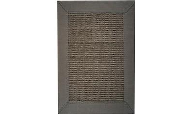 Sisalteppich, »Manaus«, ASTRA, rechteckig, Höhe 6 mm, maschinell gewebt kaufen