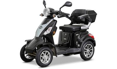 Rolektro Elektromobil »Rolektro E-Quad 25«, 25 km/h, (mit Topcase) kaufen