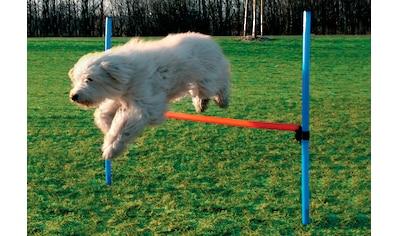 Heim Hunde - Hürde »Dog Agility Hürde« kaufen