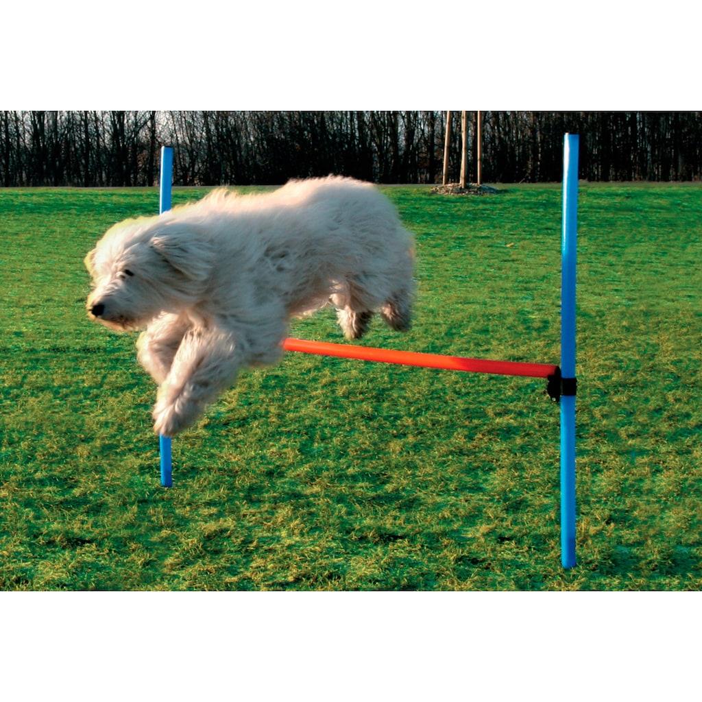 Heim Hunde-Hürde »Dog Agility Hürde«
