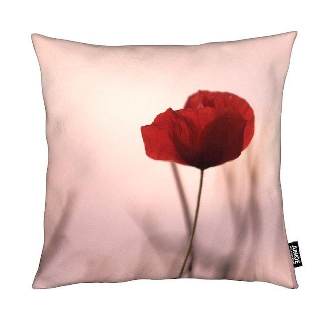 Dekokissen, »Rose Papermoon«, Juniqe