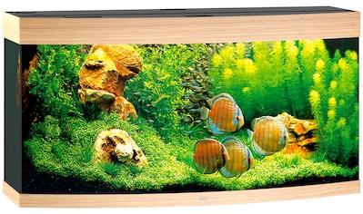 JUWEL AQUARIEN Aquarium »Vision 260«, 260 Liter, BxTxH: 121x46x64 cm, in versch. Farben kaufen