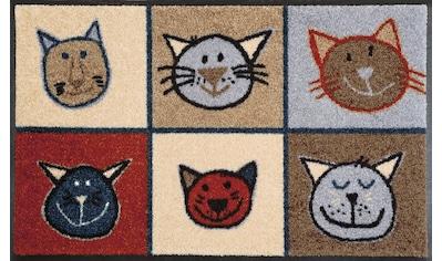 wash+dry by Kleen-Tex Fußmatte »Miau Miau«, rechteckig, 7 mm Höhe, Schmutzfangmatte,... kaufen