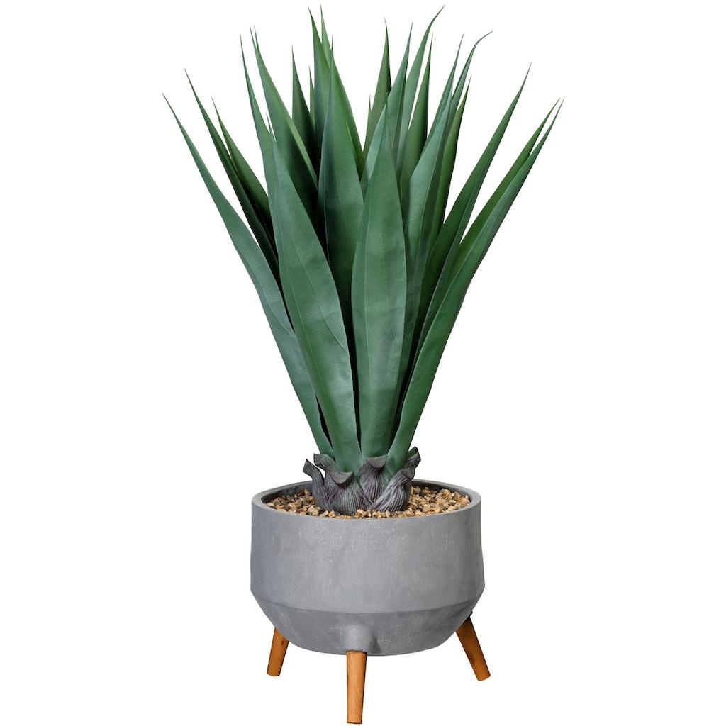 Creativ green Künstliche Zimmerpflanze »Agave«, in Fibreclayschale