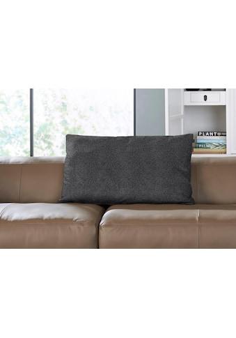 hülsta sofa Rückenkissen »hs.432«, mit Rolle wahlweise in Stoff oder Leder kaufen