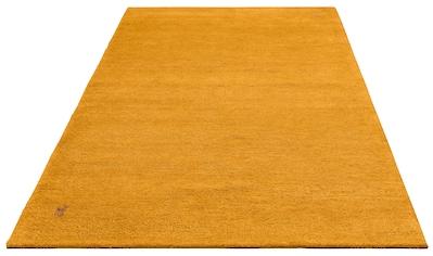 DELAVITA Wollteppich »Gabbeh Amon«, rechteckig, 18 mm Höhe, reine Wolle, Wohnzimmer kaufen