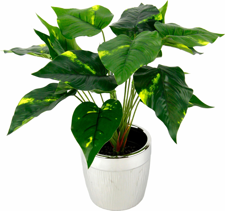 I.GE.A. Kunstpflanze Pothospflanze im Topf (1 Stück) grün Zimmerpflanzen Pflanzen Garten Balkon Kunstpflanzen
