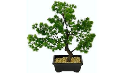 I.GE.A. Kunstbonsai »Bonsai«, in Bonsaischale aus Kunststoff kaufen