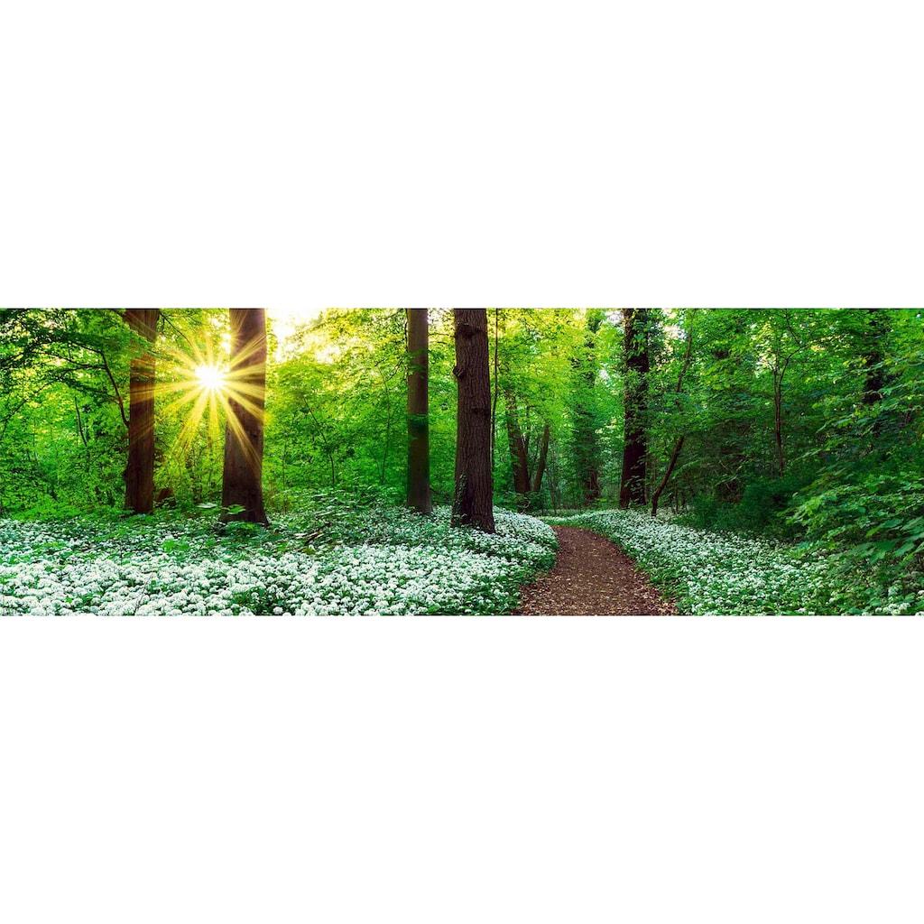 Reinders! Holzbild »Deco Panel 30x90 Spring Forest«