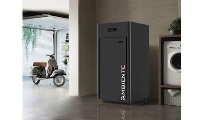 Blaze Pelletkessel »Ambiente AC 34« kaufen