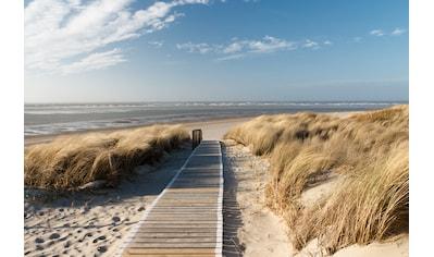 Papermoon Fototapete »Dunes in Langeoog« kaufen