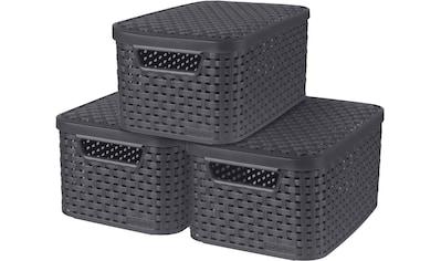 Curver Aufbewahrungsbox »Style«, (Set, 3 St.), mit Deckel anthrazit, 3 x 7 Liter kaufen