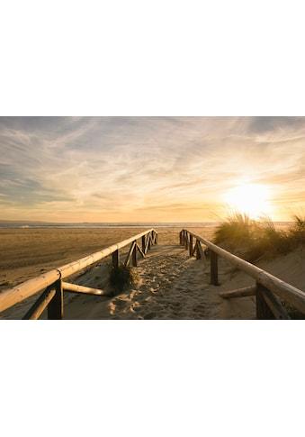 Papermoon Fototapete »Sonnenuntergangsdünen«, Vliestapete, hochwertiger Digitaldruck kaufen