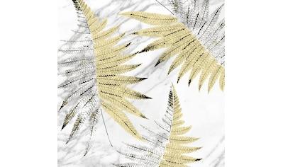 Art for the home Leinwandbild »Palmenblätter«, Pflanzen kaufen