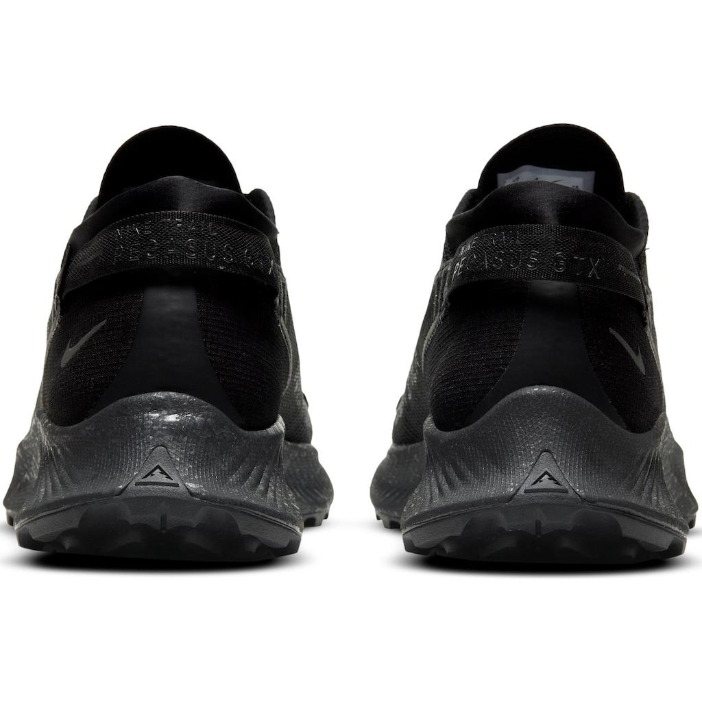 Nike Laufschuh »Pegasus Trail 2 Gore-Tex«