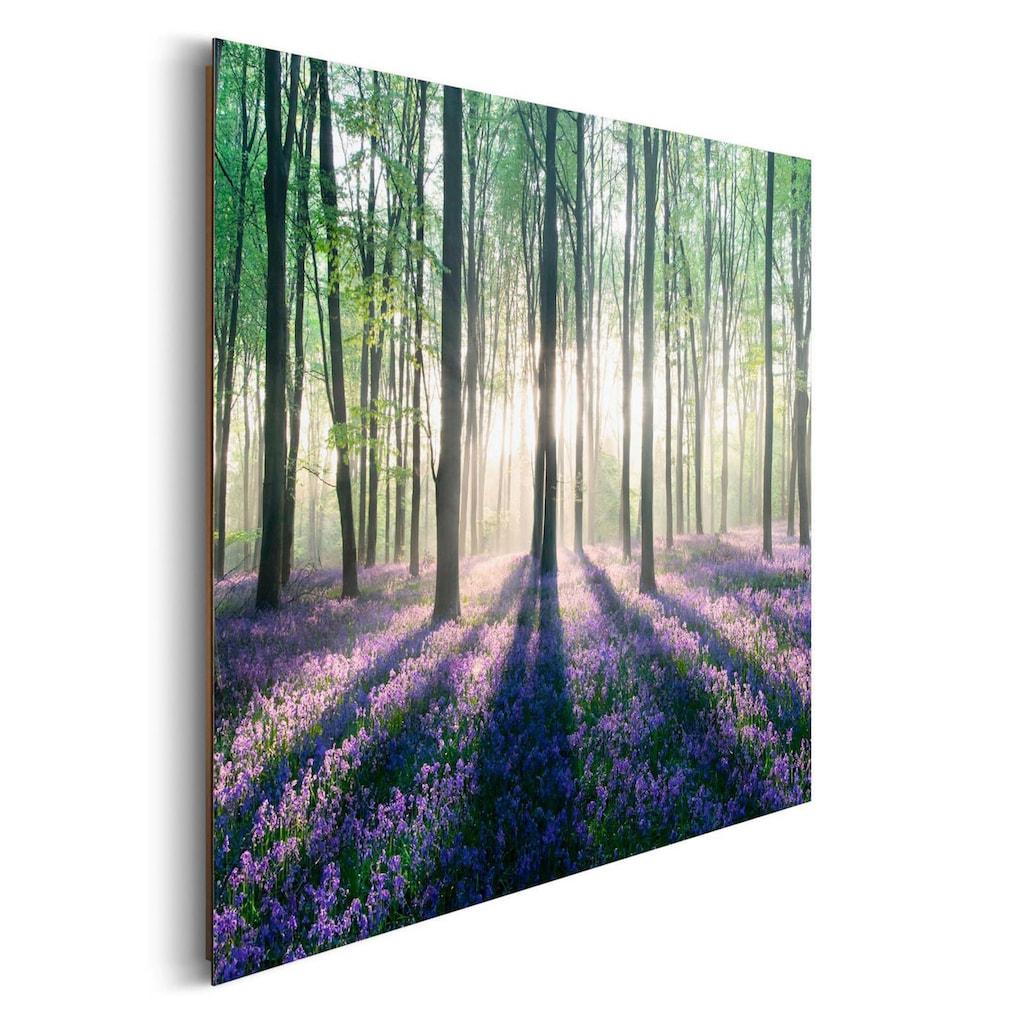 Home affaire Deco-Panel »Verzauberter Wald«