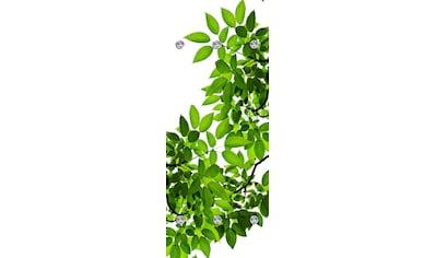 queence Garderobenpaneel »Blätter«, mit 6 Haken, 50 x 120 cm kaufen