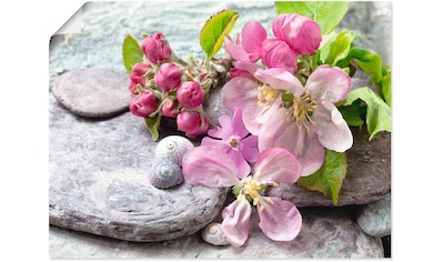 Artland Wandbild »Apfelblüten« kaufen