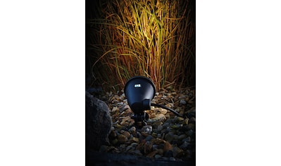 OASE Teichbeleuchtung »LunAqua Classic«, LED 1,3 Watt kaufen
