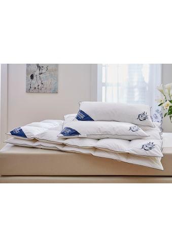 Daunenbettdecke, »Jasmin«, Guido Maria Kretschmer Home&Living, Füllung: 90% Daunen, 10% Federn, Bezug: 100% Baumwolle kaufen