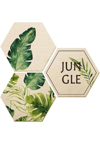 Wall-Art Holzbild »Kvilis - Jungle«, (Set) kaufen