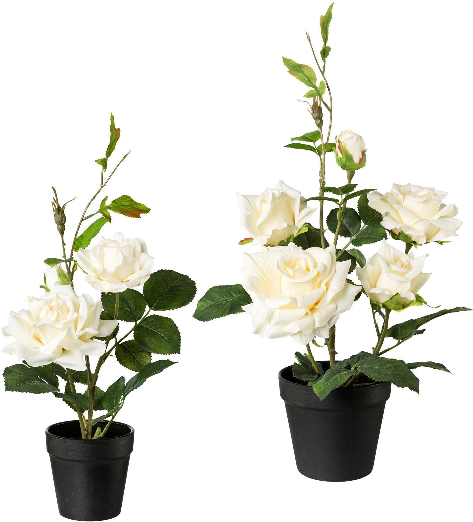 Creativ green Künstliche Zimmerpflanze, 2er Set weiß Zimmerpflanzen Kunstpflanzen Wohnaccessoires Zimmerpflanze