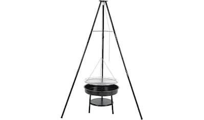 Tepro Holzkohlegrill »Schwenkgrill Cary«, BxTxH: 110x110x162 cm kaufen
