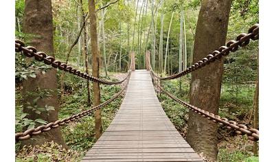 Papermoon Fototapete »Suspension Bridge« kaufen