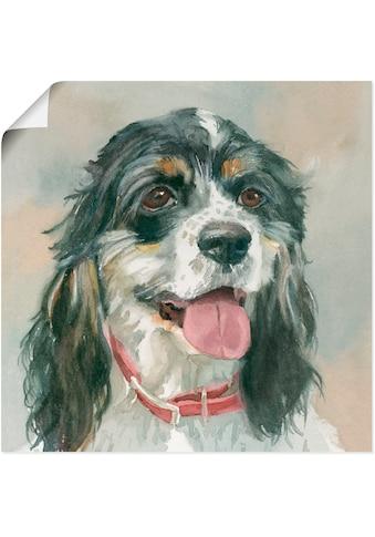 Artland Wandbild »Winston Cocker Spaniel«, Haustiere, (1 St.), in vielen Größen &... kaufen
