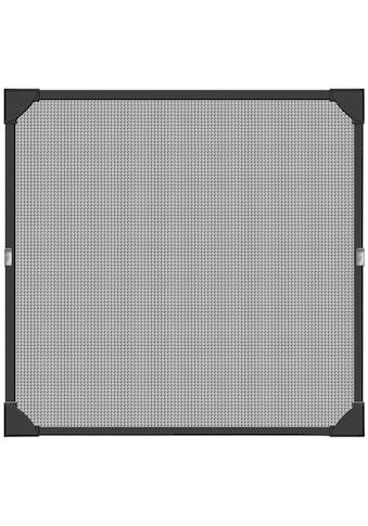 SCHELLENBERG Insektenschutz-Fenster »Magnet«, BxH: 100x120 cm, anthrazit kaufen