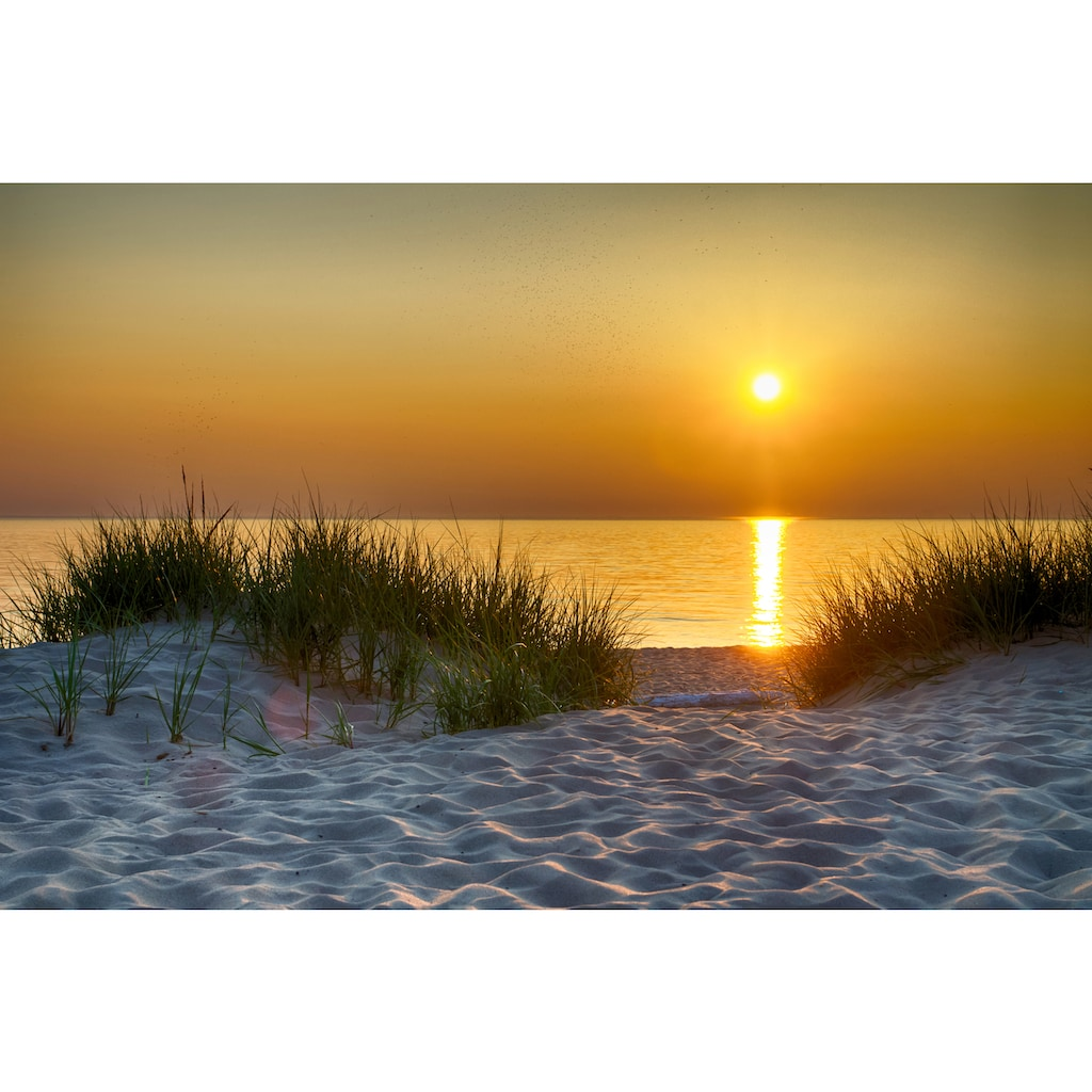 Papermoon Fototapete »Dunes Lake Michigan«