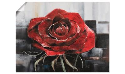 Artland Wandbild »Blühende rote Rose«, Blumen, (1 St.), in vielen Größen &... kaufen