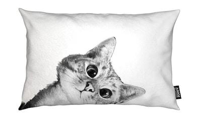 Juniqe Dekokissen »Sneaky Cat«, Weiches, allergikerfreundliches Material kaufen