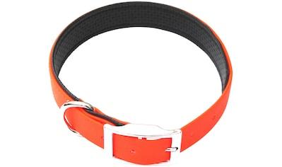 HEIM Hunde-Halsband »Biothane«, Biothane, gefüttert, neonorange, in 4 Größen kaufen